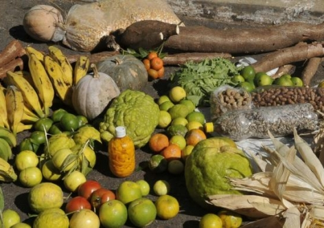 ministerio saude alimentar